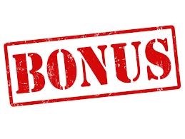 eCom Empire Bonus Package